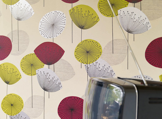 Dandelion_clocks_wallpaper_detail_mid_lr